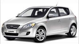 """Украинских """"Kia"""" и """"Hyundai"""" стало больше"""