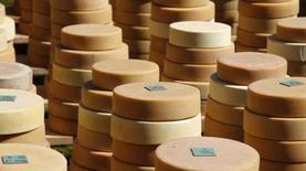 Черный список продуктов: откуда масло в украинском сыре