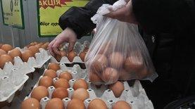 Овостар увеличила экспорт яиц почти на 70%