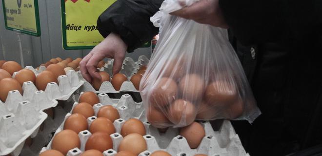 Овостар увеличила экспорт яиц почти на 70% - Фото
