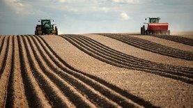 Опыт соседей: какая земельная реформа нужна Украине?