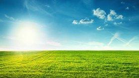 Пять мифов об отмене моратория на продажу земли