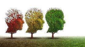 Девять простых привычек, которые помогут вам стать умнее