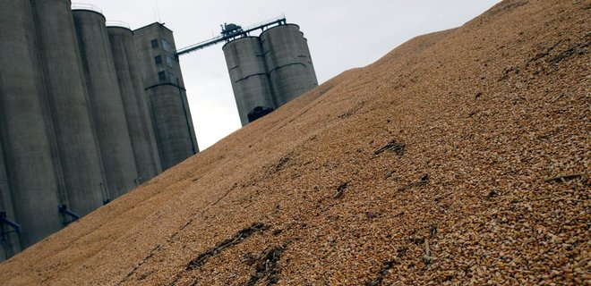 Вьетнам возобновил импорт украинской пшеницы - Фото