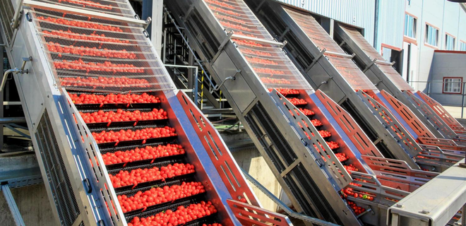 IFC может предоставить кредит украинскому производителю томатов - Фото