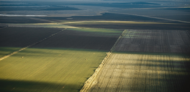Крым из-за засухи может остаться без урожая - Фото