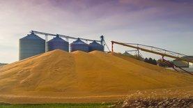 Украина экспортировала 35 млн тонн зерна