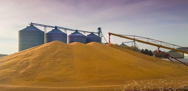 Украина экспортировала 35 млн тонн зерна - Фото