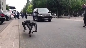 Boston Dynamics вывели робособаку на прогулку в Ганновере: видео